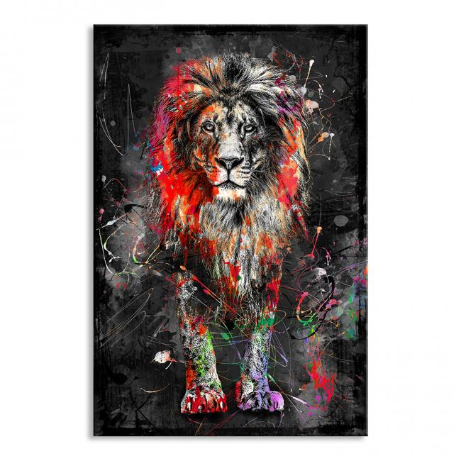 Wandbild Colorful Lion - AluDibond